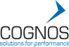 Cognos Business Consulting